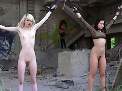 Three beautiful slaves tormented for pleasure